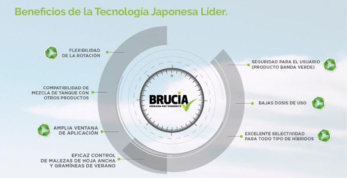 Tecnologia japonesa Summitagro