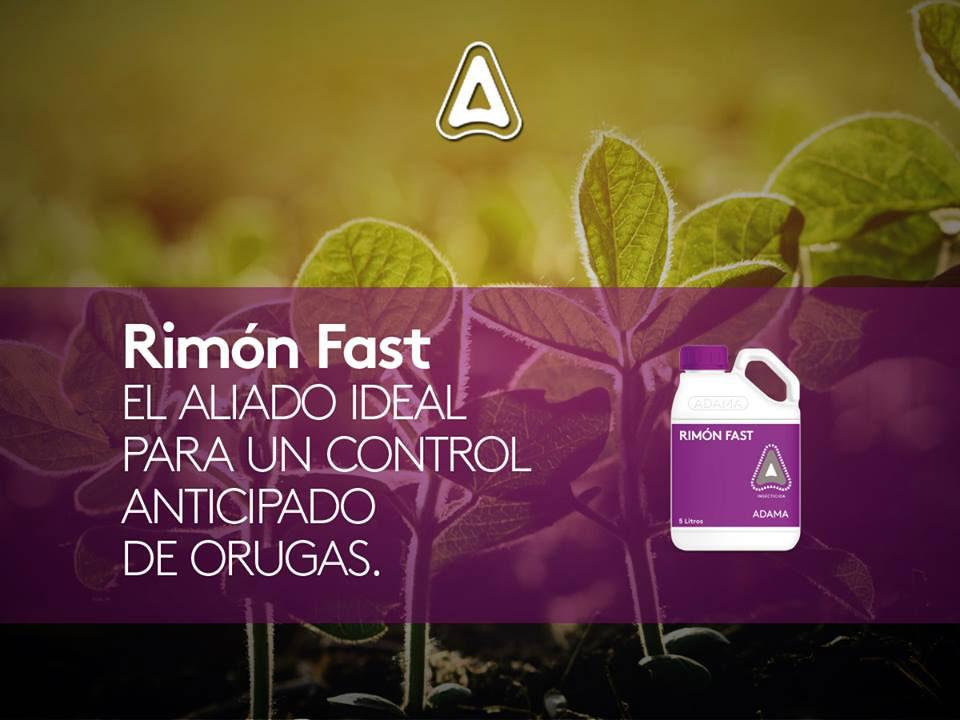 Rimon fast