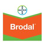 brodal