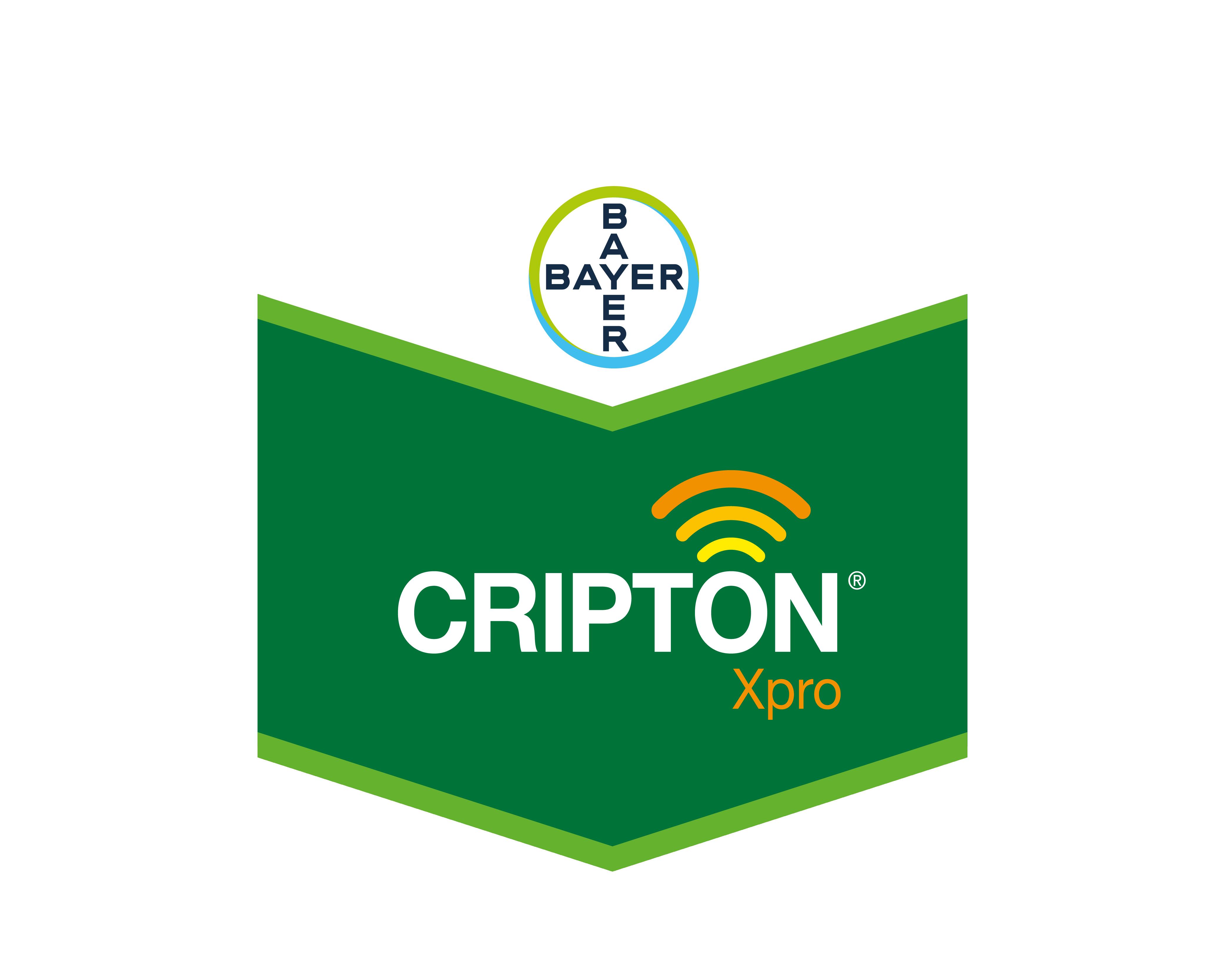 cripton xpro