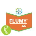 Flumy